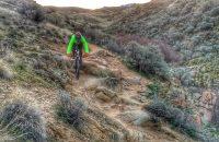 Bob's trail