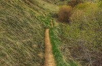 Upper Hulls Gulch trail