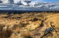 Shane's Trail