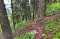 Mahalo Trail