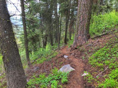 Mahalo Trail Boise 2